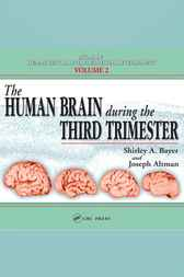 The Human Brain During the Third Trimester by Shirley A. Bayer