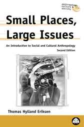 Small Places, Large Issues by University of Oslo Thomas Hylland Eriksen (Professor of Social Anthropology