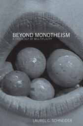 Beyond Monotheism by Laurel Schneider