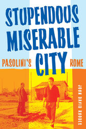 Stupendous, Miserable City by John David Rhodes