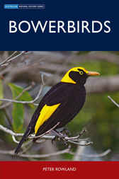 Bowerbirds by Peter Rowland