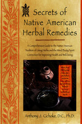 Herbal Medicine in the United States: Review of Efficacy, Safety, and Regulation