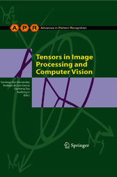 Tensors in Image Processing and Computer Vision by Santiago Aja-Fernández