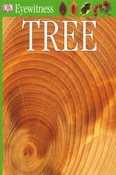 DK Eyewitness Books: Tree