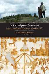Mexico's Indigenous Communities by Russ Davidson