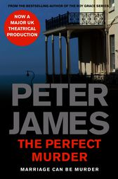 The Perfect Murder by Peter James