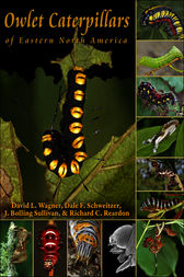 Owlet Caterpillars of Eastern North America by David L. Wagner