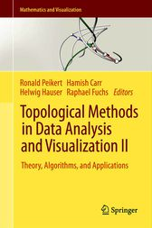 Topological Methods in Data Analysis and Visualization II