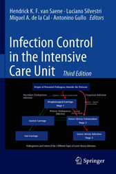 Infection Control in the Intensive Care Unit by Hendrick K.F. van Saene