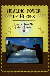 Healing Power of Horses by Wendy Beth Baker