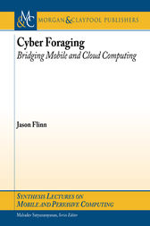Cyber Foraging