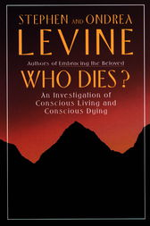 Who Dies? by Stephen Levine