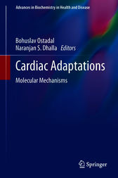 Cardiac Adaptations by unknown