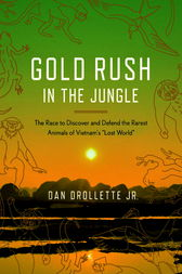Gold Rush in the Jungle by Dan Jr Drollette
