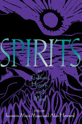 Spirits in Culture, History and Mind by Jeannette Mageo