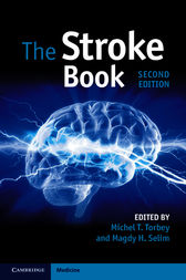 The Stroke Book by Michel T. Torbey