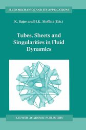 Tubes, Sheets and Singularities in Fluid Dynamics by K. Bajer