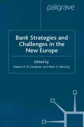 Bank Strategies and Challenges in the New Europe by Edward P.M. Gardener