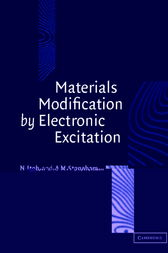 Materials Modification by Electronic Excitation by Noriaki Itoh