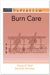 Burn Care by S. E. Wolf
