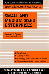 Small and Medium Sized Enterprises by Kenneth Dyson