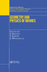 Geometry and Physics of Branes by U Bruzzo