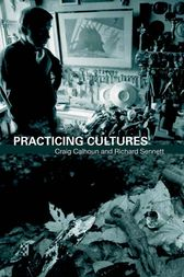 Practicing Culture by Craig Calhoun