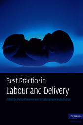 Best Practice in Labour and Delivery by Richard Warren