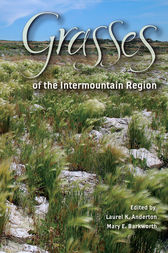 Grasses of the Intermountain Region by Laurel K. Anderton