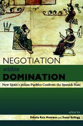 Negotiation Within Domination by Ethelia Ruiz Medrano