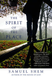 The Spirit of the Place by Samuel Shem