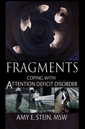 Fragments by Amy E Stein