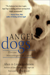 Angel Dogs by Allen Anderson