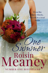 One Summer by Roisin Meaney