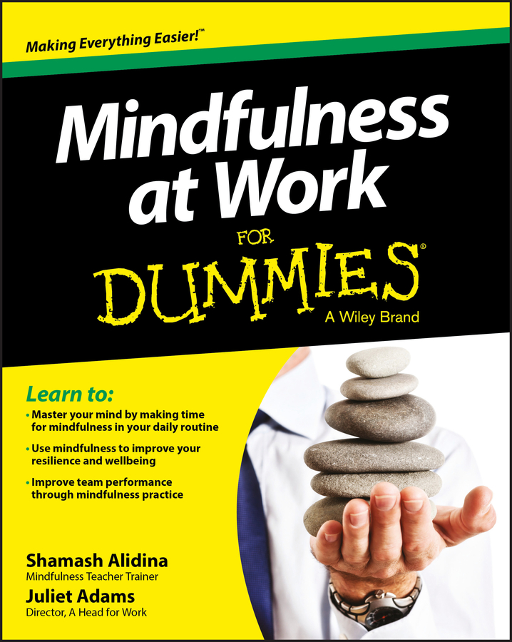 Download Ebook Mindfulness at Work For Dummies by Shamash Alidina Pdf
