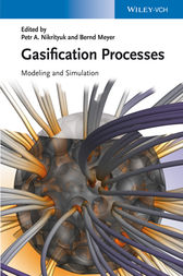 Gasification Processes by Petr A. Nikrityuk