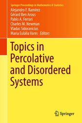 Topics in Percolative and Disordered Systems by Alejandro F. Ramírez