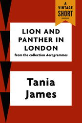 Lion and Panther in London by Tania James
