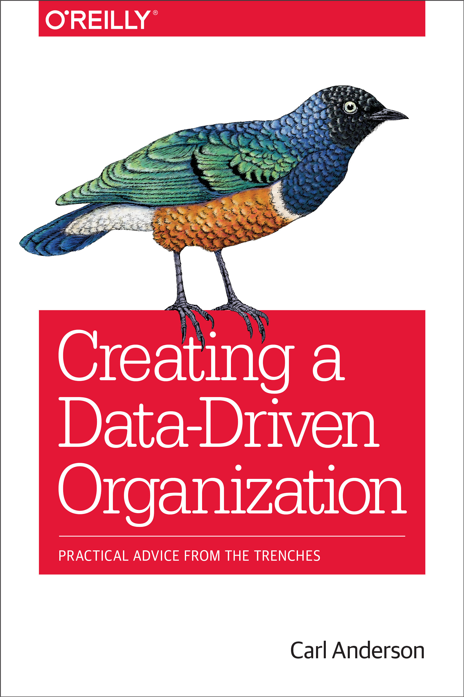 Download Ebook Creating a Data-Driven Organization by Carl Anderson Pdf