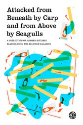 Attacked from Beneath by Carp and from Above by Seagulls by The Believer magazine