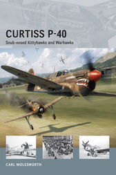 Curtiss P-40 by Carl Molesworth