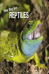 How they live... Reptiles by David Withrington