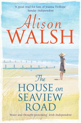 The House on Seaview Road by Alison Walsh