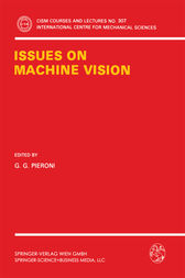 Issues on Machine Vision by G.G. Pieroni