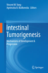 Intestinal Tumorigenesis by Vincent W. Yang