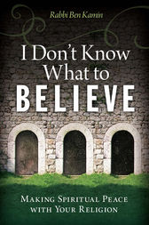 I Don't Know What to Believe by Ben Kamin