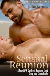 Sensual Reunion - A Sexy M/M Gay Erotic Romance Short Story from Steam Books by Jolie James