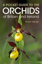 Pocket Guide to the Orchids of Britain and Ireland by Simon Harrap