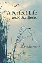 Perfect Life and Other Stories by Elaine Burnes