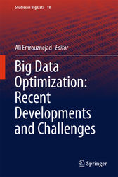 Big Data Optimization: Recent Developments and Challenges by Ali Emrouznejad